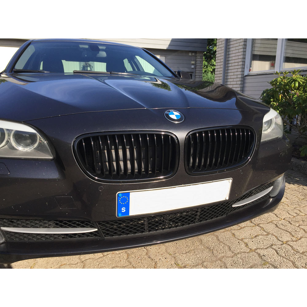 skinnende sorte nyrer BMW F10 F11